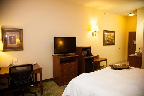Hampton Inn Brownwood - King Bedroom