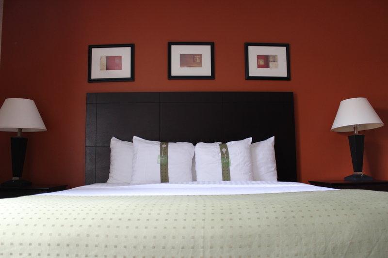 Holiday Inn Houston-Hwy 249 North Rum