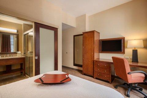 Hampton Inn Manhattan-Downtown-Financial - Queen Guest Room