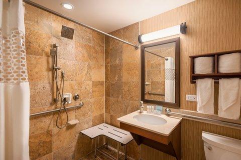 Hampton Inn Manhattan-Downtown-Financial - ADA-Accessible Bathroom