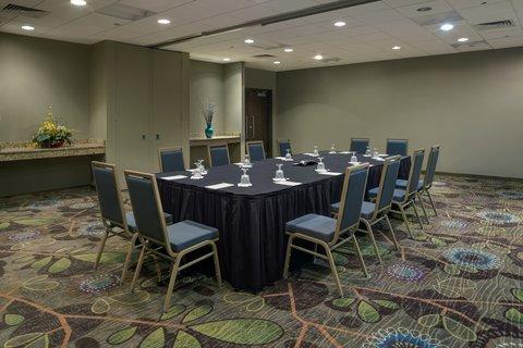 Holiday Inn ANN ARBOR-NEAR THE UNIV. OF MI - Conference Room