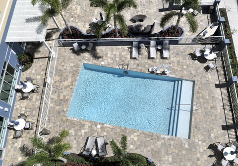 Staybridge Suites ST. PETERSBURG DOWNTOWN - Swimming Pool with Tropical Surroundings