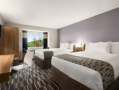 Microtel Inn & Suites by Wyndham Lynchburg - Standard Double Room