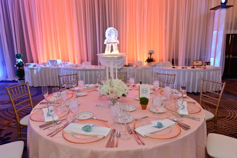 Hyatt Regency Buffalo - Wedding