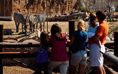 Holiday Inn EL PASO-SUNLAND PK DR & I-10 W - Enjoy the newly expanded El Paso Zoo