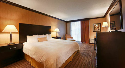 BEST WESTERN PLUS Schaumburg Hotel & Conference Center - Guest Room