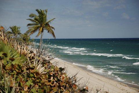 هيلتون فورت لودرديل مارينا - Beach Peace