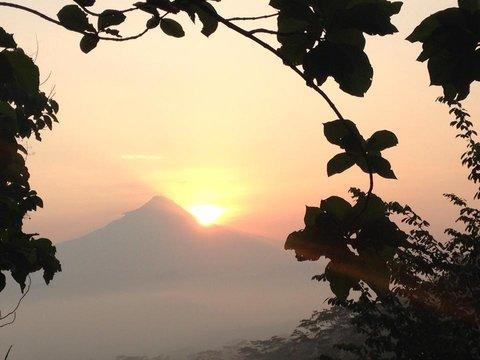 Villa Borobudur - Enjoy the sunrise at Villa Merapi