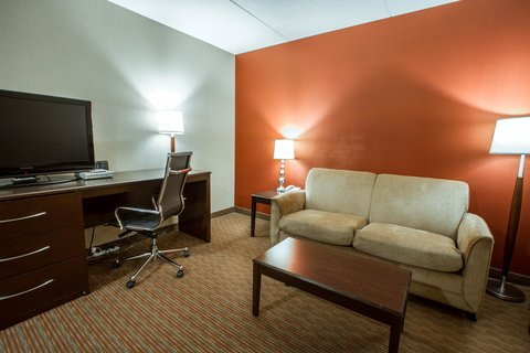 Comfort Suites Downtown - Ny Snq