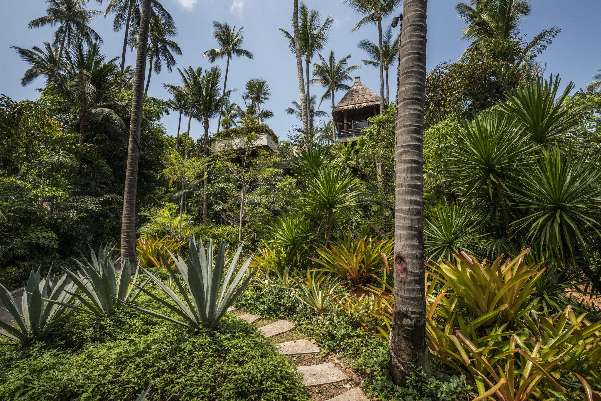 Four Seasons Koh Samui Resort