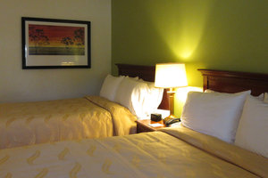 Room - Quality Inn Walterboro