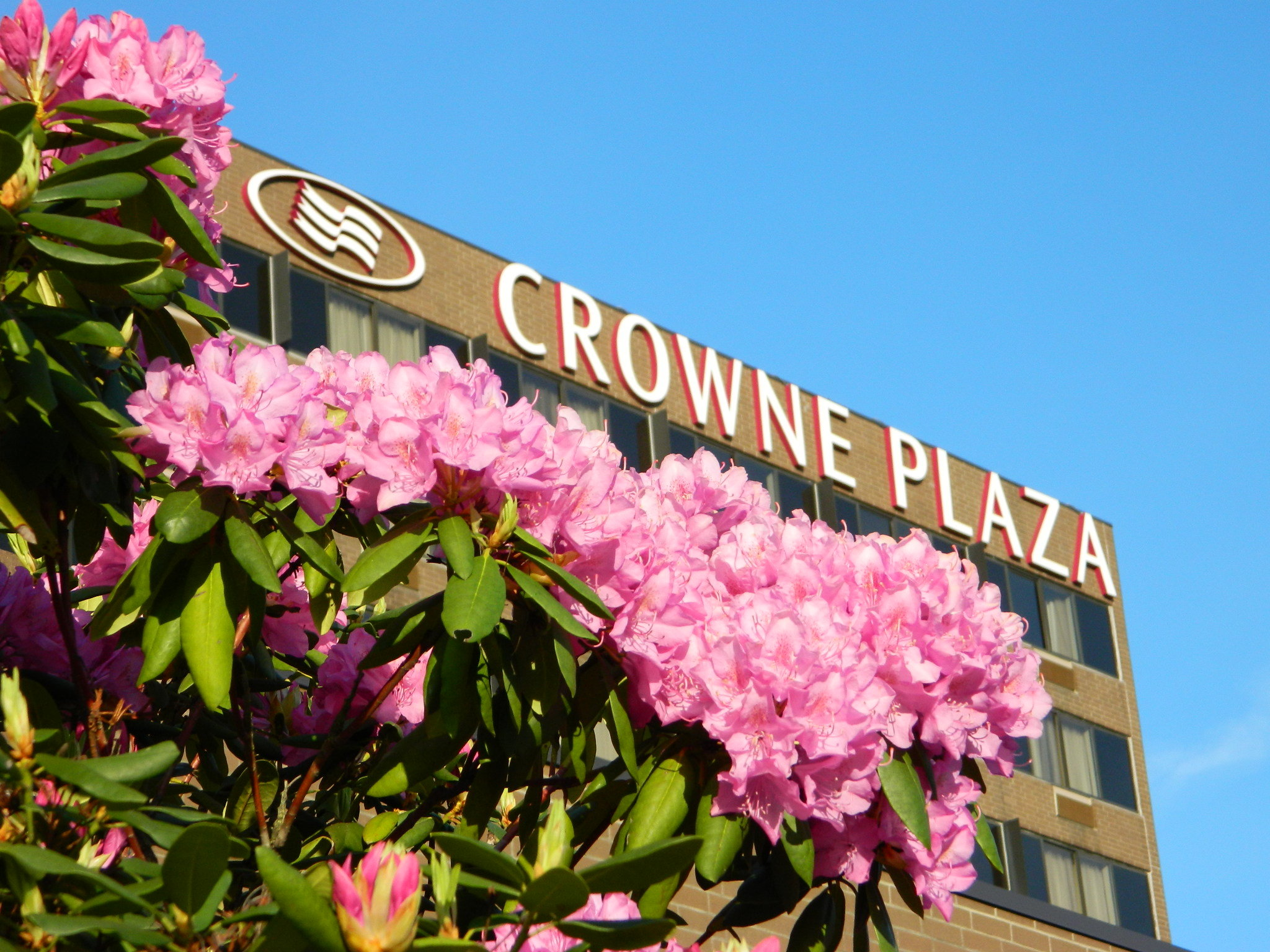 Crowne Plaza Danbury